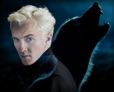 draco-malfoy-is-werewolf