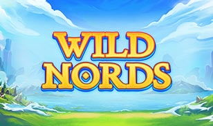 Wild Nords Slots